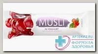 Батончик Мюсли б/сахара 30г в йогуртовой глазури ацерола N 1