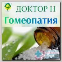 Плюмбум ацетикум 1000 гранулы гомеопатические 5г N 1