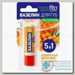 FitoКосметик вазелин д/губ 5 в 1 сибирская облепиха 4,5 г N 1