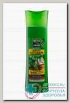 Чистая линия шампунь фитобаня д/всех типов волос 400 мл N 1