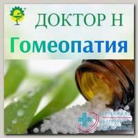 Актеа спиката С1000 гранулы гомеопатические 5г N 1