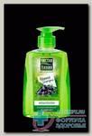 Чистая линия мягкое мыло жидкое 250мл ароматерапия черная смородина N 1